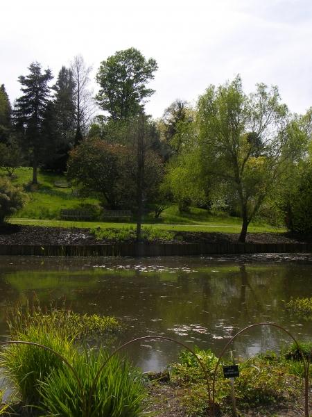 Hillier's Arboretum - May 2016